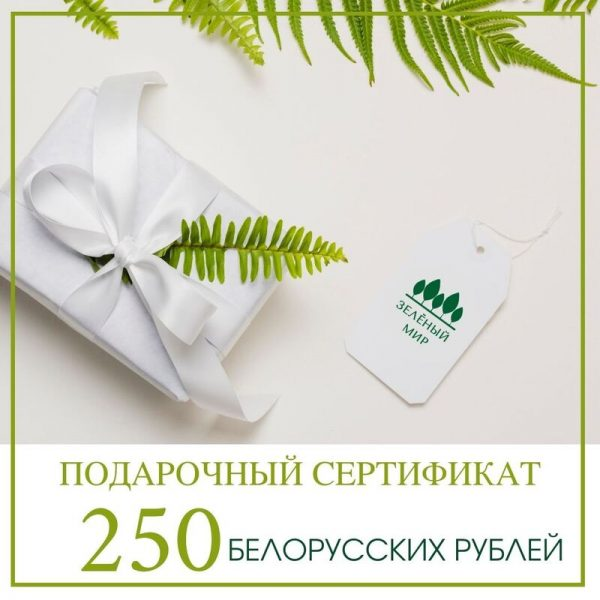 Подарочный сертификат на 250 рублей