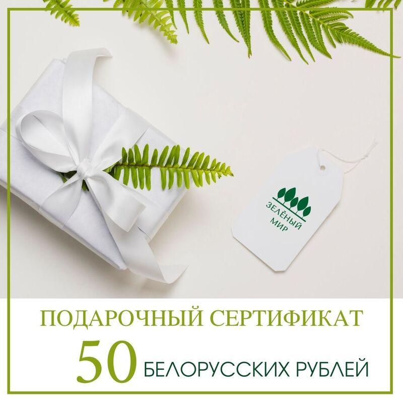 Подарочный сертификат на 50 рублей